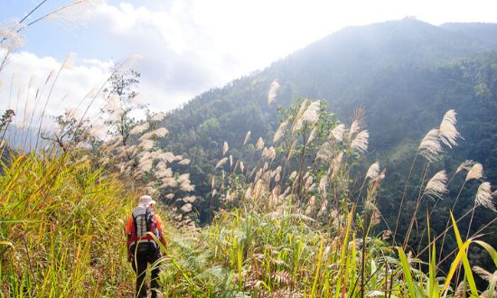 Meditours: Trekking - Chinh Phục Pu Si Lung